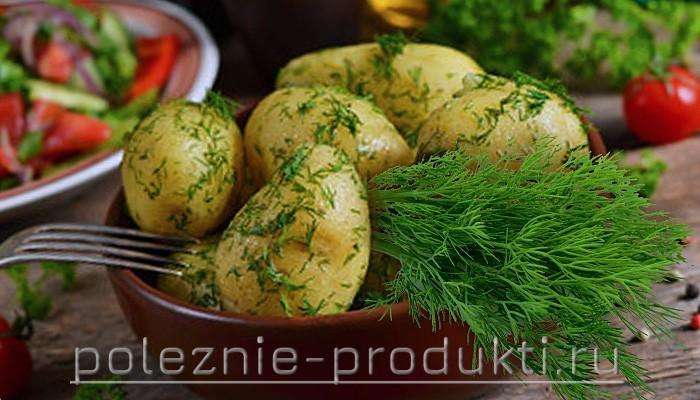 Картошка вареная в мундире с укропом