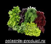 Набор свежей зелени