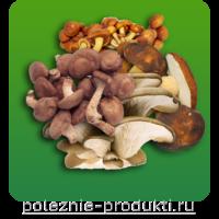 Свежие съедобные грибы
